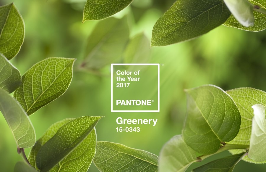 Pantone 2017 color Greenery