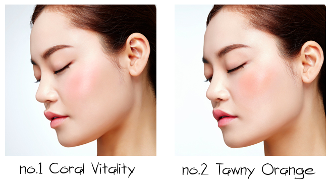 VDL and PANTONE 2017 Greenery Expert Color Cheek Book Mono no.1 Coral Vitality, no.2 Tawny Orange