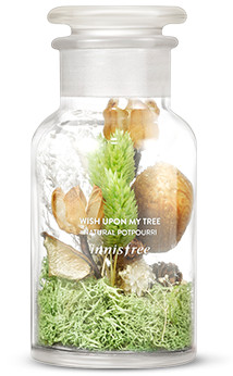 Innisfree 2017 Green Christmas Wish Upon My Tree Natural Potpourri