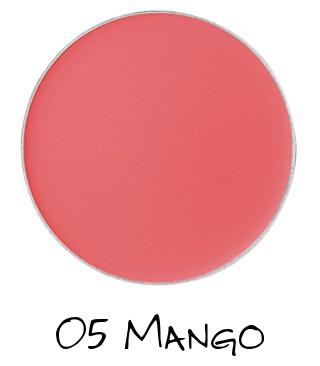 CHICCA 2018 Spring Collection FRESH Flawless Glow Flush Blush 05 Mango
