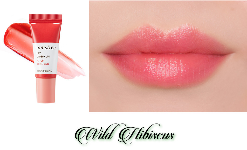 Innisfree 2018 Green Christmas Limited Edition My Lip Balm Best Collection Wild Hibiscus
