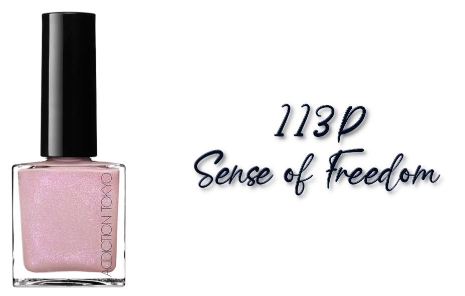 ADDICTION Fall 2021 Collection Sense Of Clarity The Nail Polish L 113P Sense of Freedom
